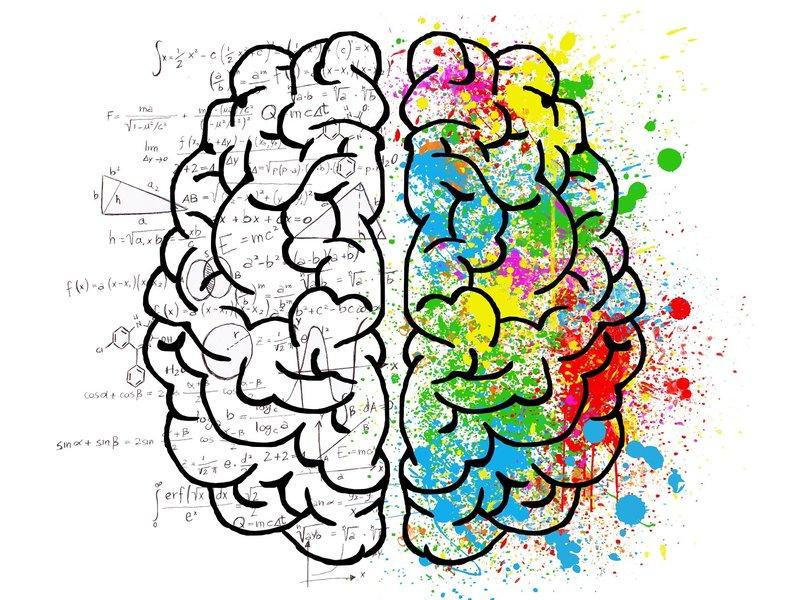 Ecommerce basado en la psicología del cliente