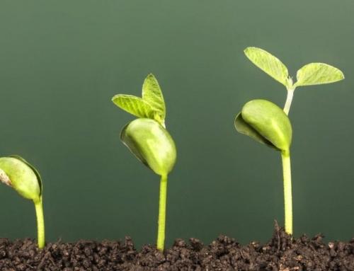 Nuestra metodología de crecimiento (Growth Hacking) para Ecommerce